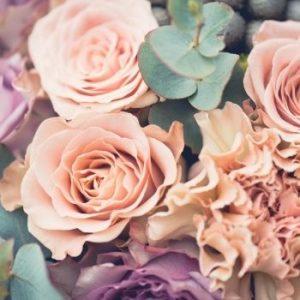 Blooms of Hope